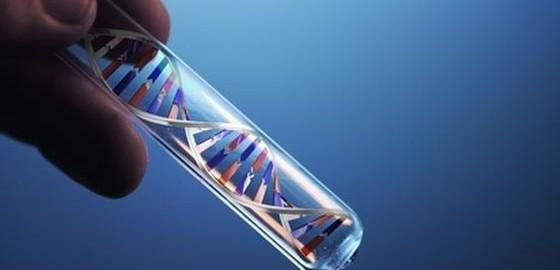 Qu'est-ce un test de paternité ( Adn ) Comme chaque personne reçoit la moitié du matériel génétique (ADN) de sa mère, et l'autre moitié de son père…